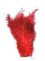 Floss veer rood