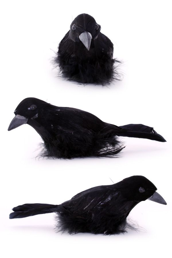 Raaf zwart 15cm per stuk