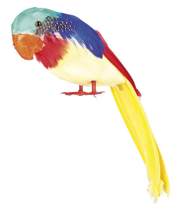 Papegaai Tweets 30cm