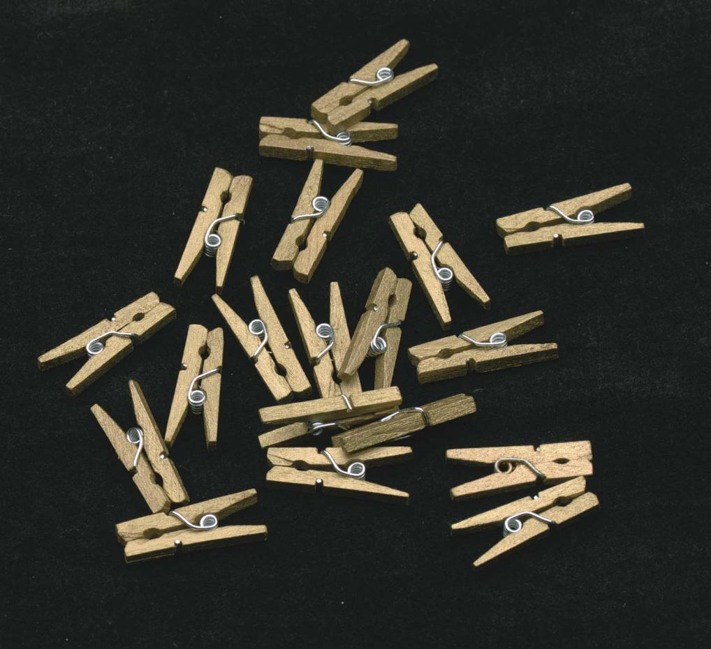 Mini wasknijpers goud per 20 stuks verpakt