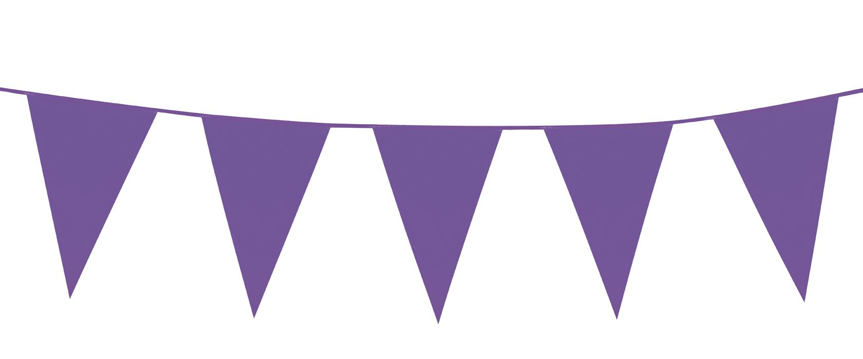 PE reuze vlaggenlijn paars (10 m)