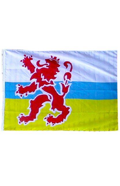 Vlag origineel limburg en leeuw